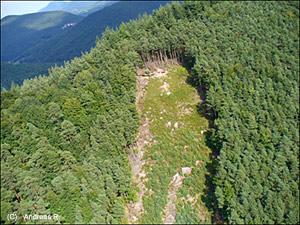 haus gebraucht wildenstein ellenberg